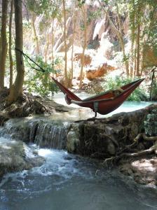 B in hammock