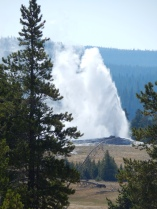 Old Faithful from a distance